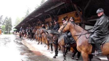 Permalink auf:Pferdestall + Gastpferdeboxen