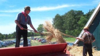 Permalink auf:Bauernmarkt
